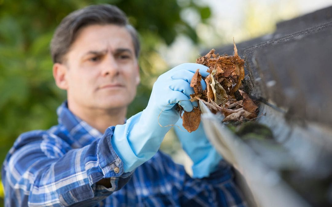 How to Clean the Gutters in 4 Steps